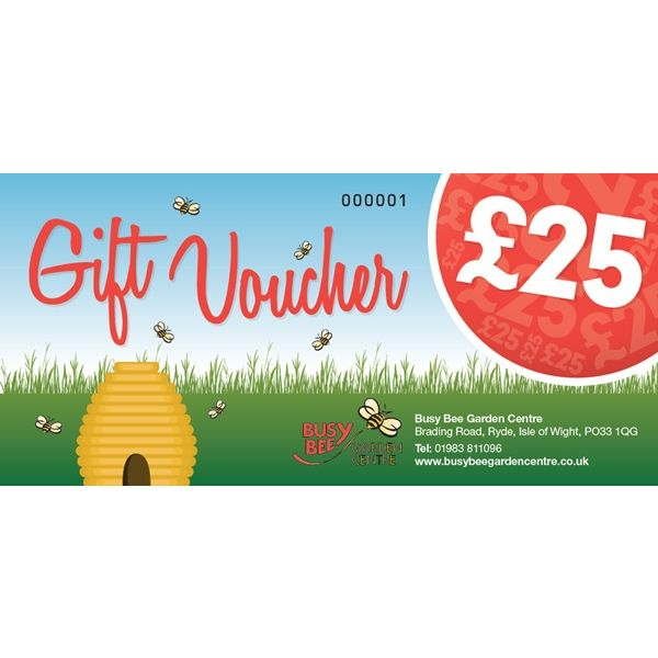 £25 Busy Bee Gift Voucher
