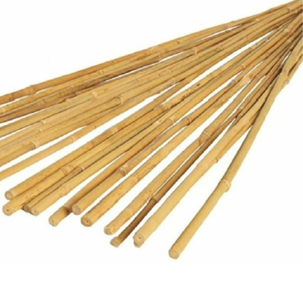 4FT BAMBOO CANES