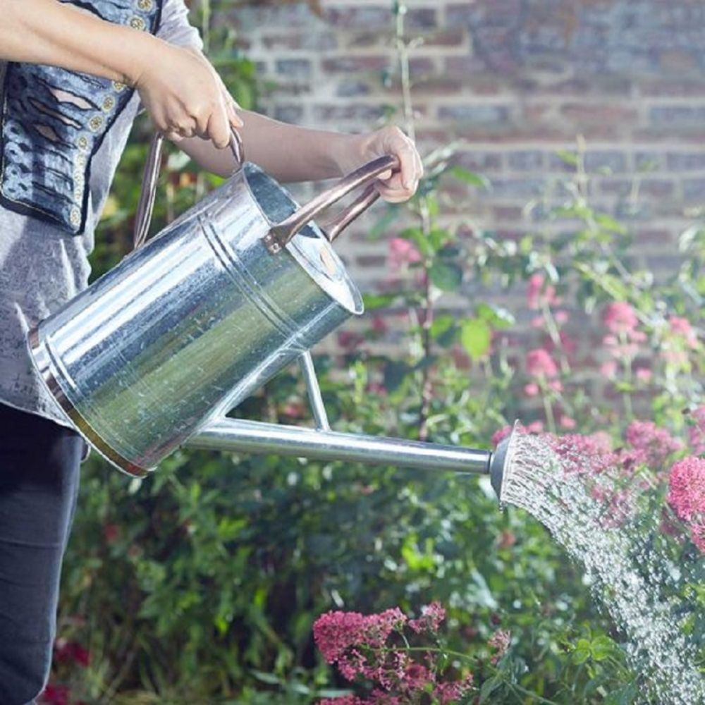 Watering Can Galvanized Steel 9L