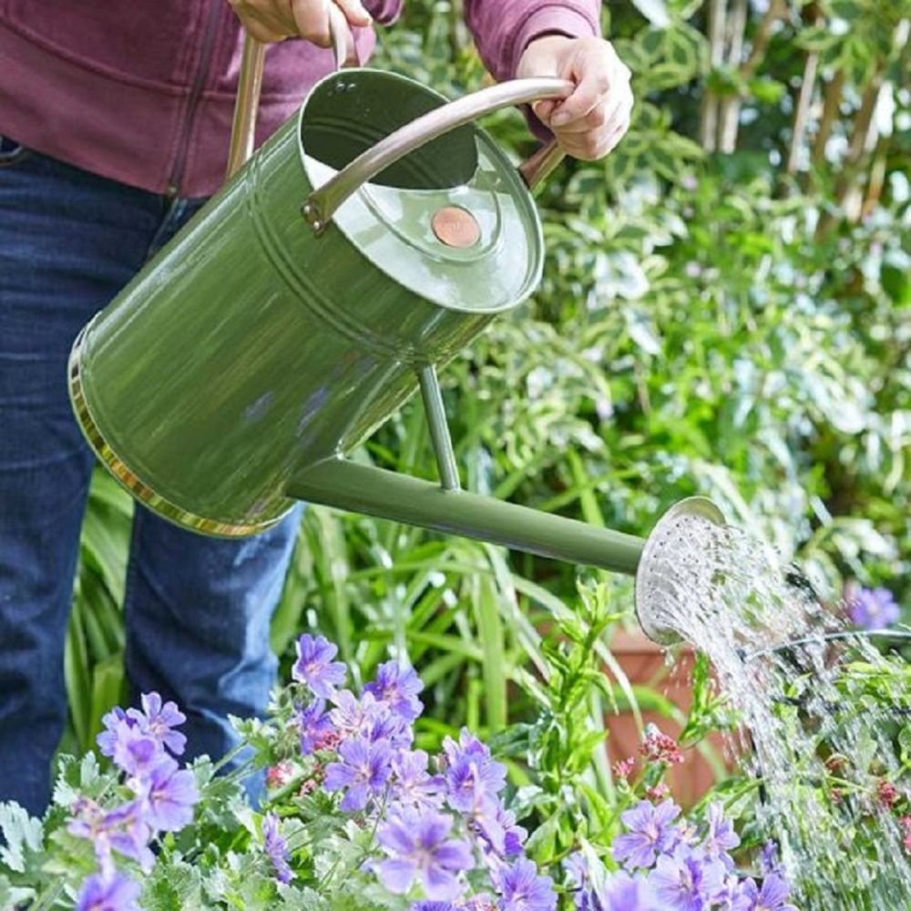 Watering Can Sage 9L