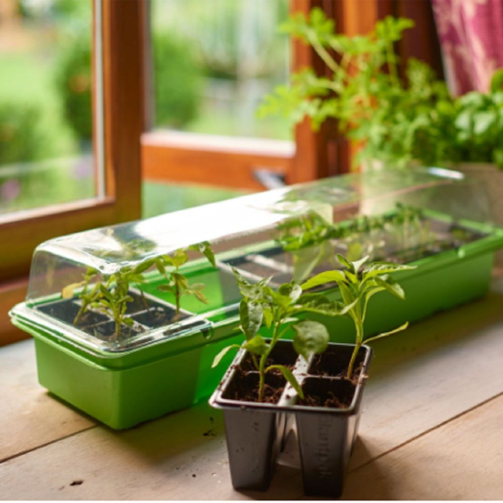 Plantpak Windowsill Greenhouse