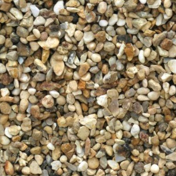 Alpine Gold 6mm Large