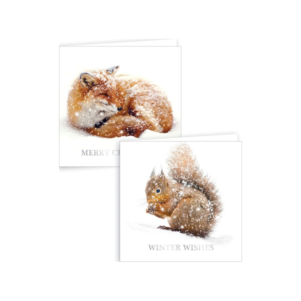 Cards, 12 Fox & Squirrel