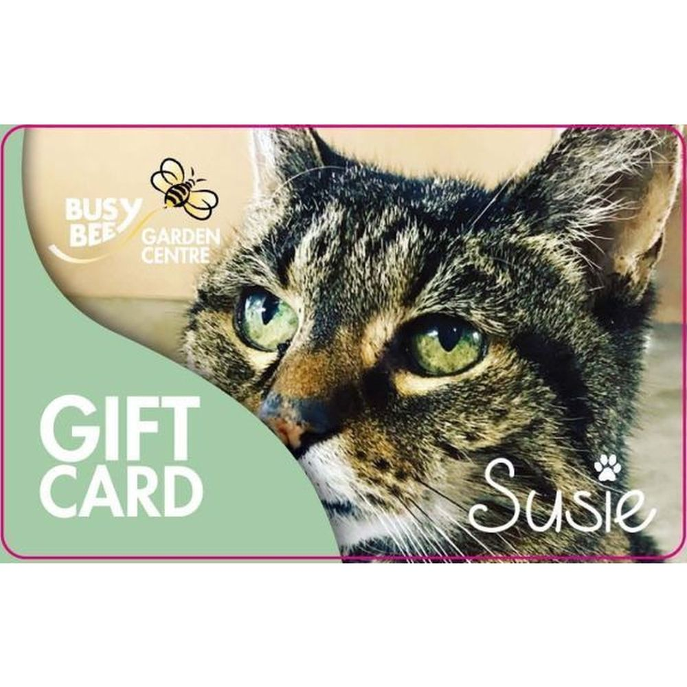 £20 Gift Card Susie